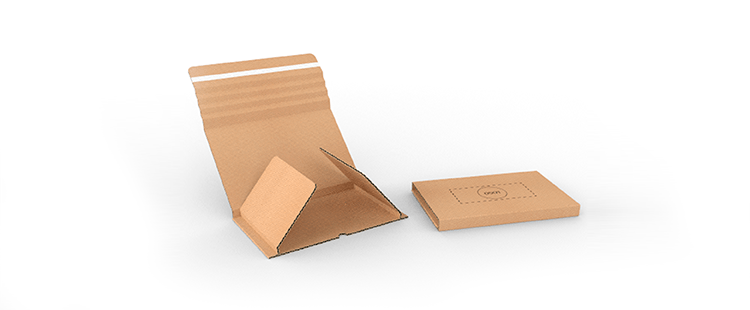 Single Wall Cardboard Book Boxes with Adhesive Lock