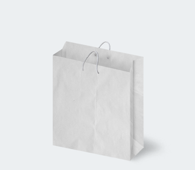 Vertical paper carrier bag with corded handles