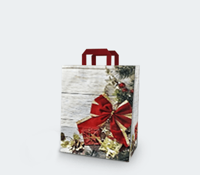 """Vertical paper carrier bag with flat handles """"Gift"""""""