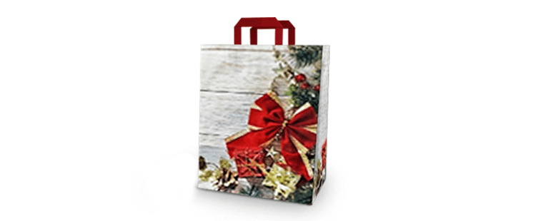 "Vertical paper carrier bag with flat handles ""Gift"""